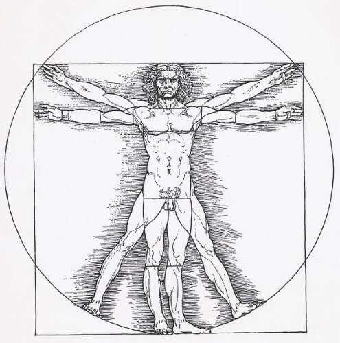 """""""Vitruvianischer Mann"""" von Leonardo da Vinci"""