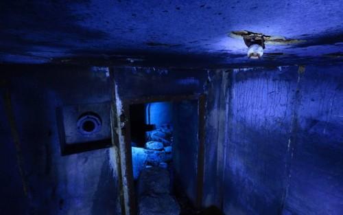 Lukasz Bozycki fotografiert in deutschen Bunkern Wasserfledermäuse, die dort auch bei Minusgraden ausharren