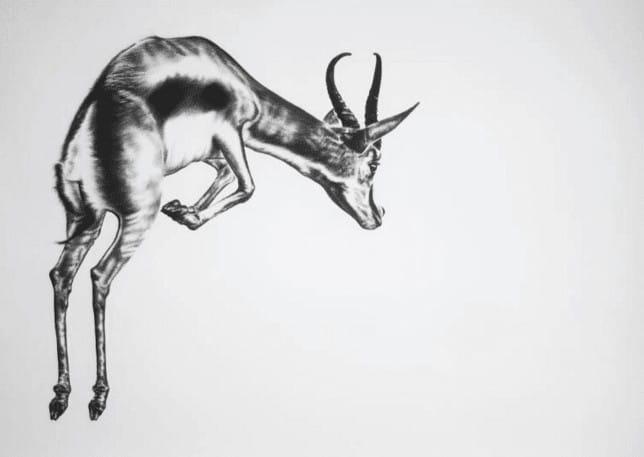 """Kohlezeichnung """"Pronk"""" von Ira van der Merwe"""
