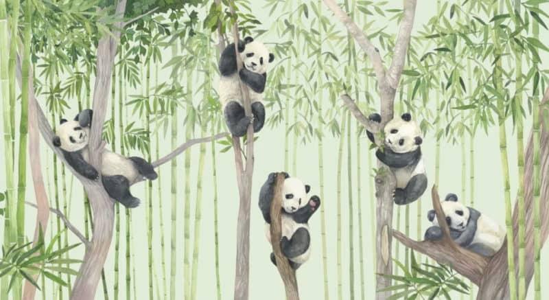 Fototapete Tiermotiv auf PhotoWall - Wall Art Trends