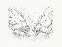 """Druckgrafik """"Kleiner Hahnenkampf"""" von Günter Grass"""