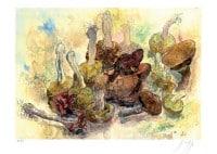 """Limitierte Druckgrafik """"Stillleben mit Pilzen"""" von Günter Grass"""