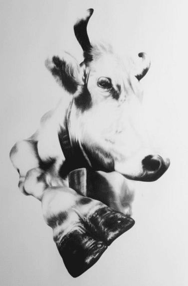 """Kohlezeichnung """"Schweizer Kuh VI"""" von Ira van der Merwe"""