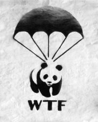 """""""WTF"""" von Juan Sly"""