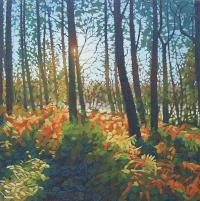 """Bracken Wood"" Limited Edition Kunstdruck von Paul Burgess"